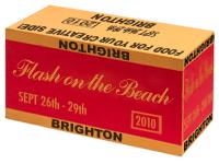 Flash on the Beach 2010